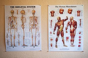 Image of medical massage therapy poster
