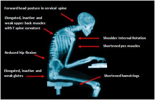 x-ray desk jockey